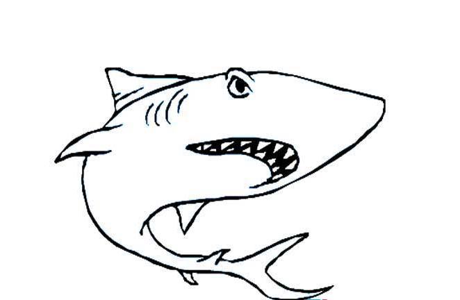 大鲨鱼_动物简笔画-e学堂