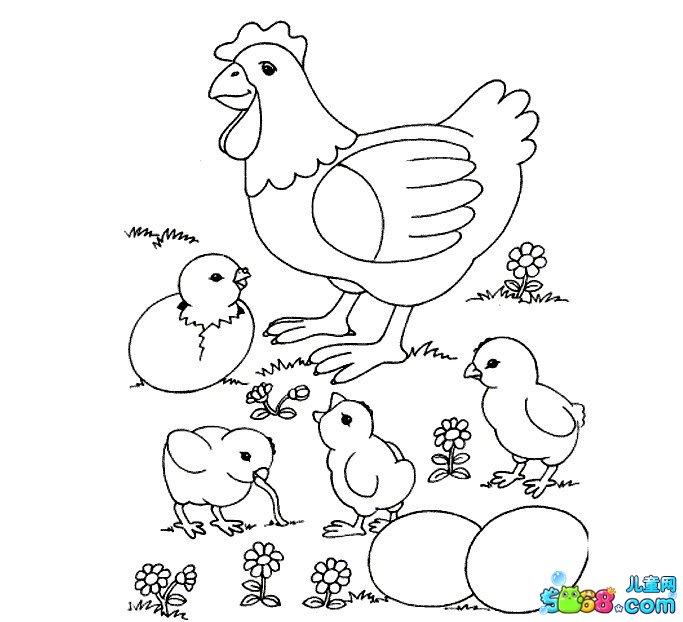 小鸡出壳_动物简笔画-e学堂