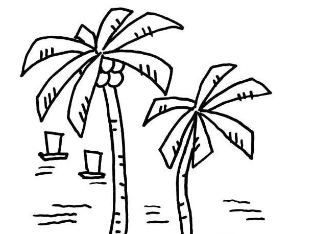 海滩椰子_植物简笔画-e学堂