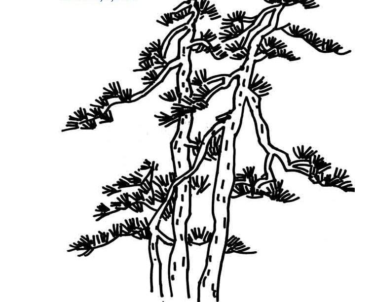 山和松树纹身手稿素材