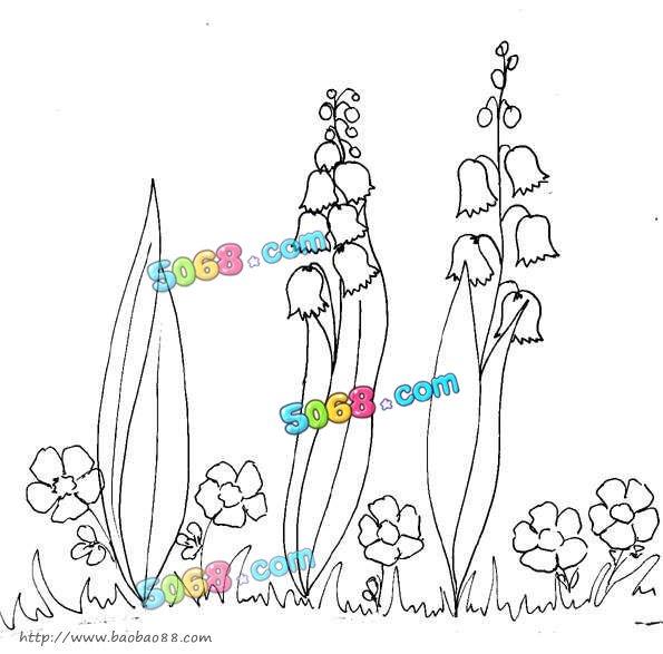 风铃花的画法风铃花的画法步骤