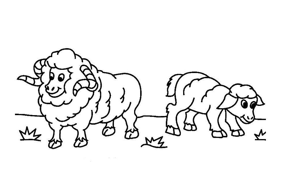 吃草的小羊_动物简笔画-e学堂