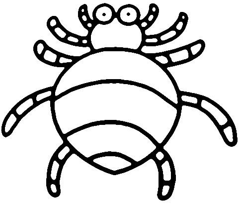 动物腿的简笔画怎么画