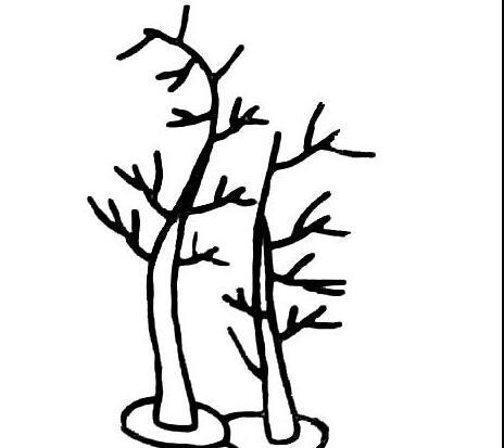 小树简笔画大全可爱