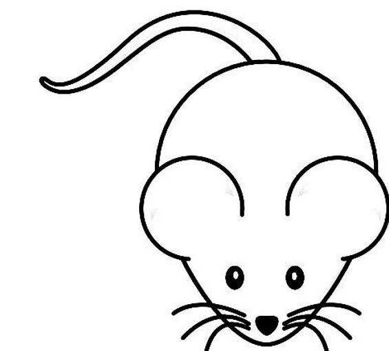 呆萌的小老鼠