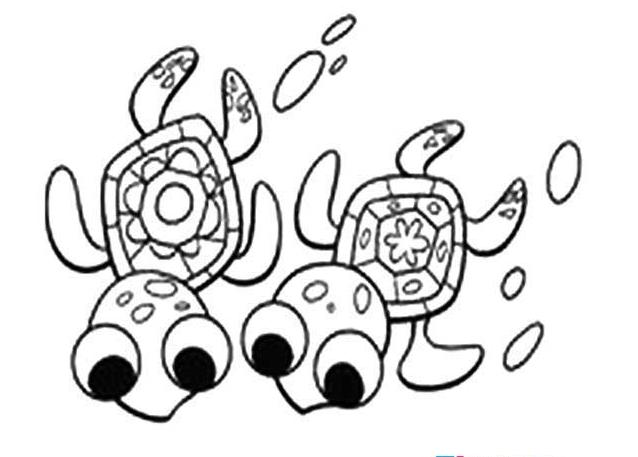 小海龟_动物简笔画-e学堂