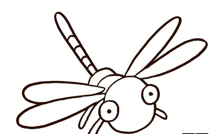 我是小蜻蜓我怕谁_动物简笔画-e学堂