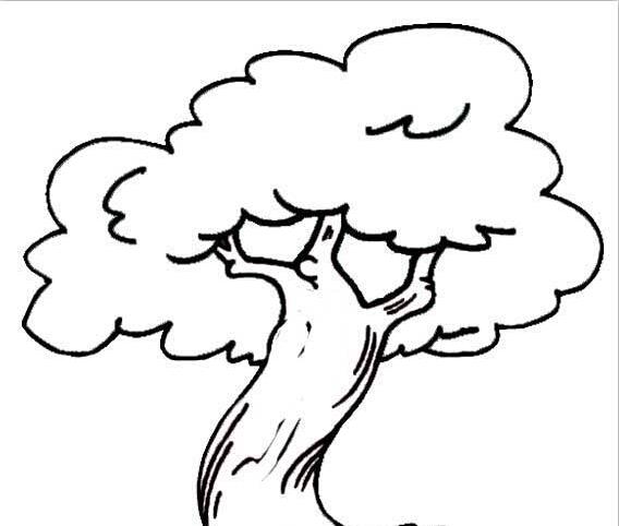 大树的简笔画