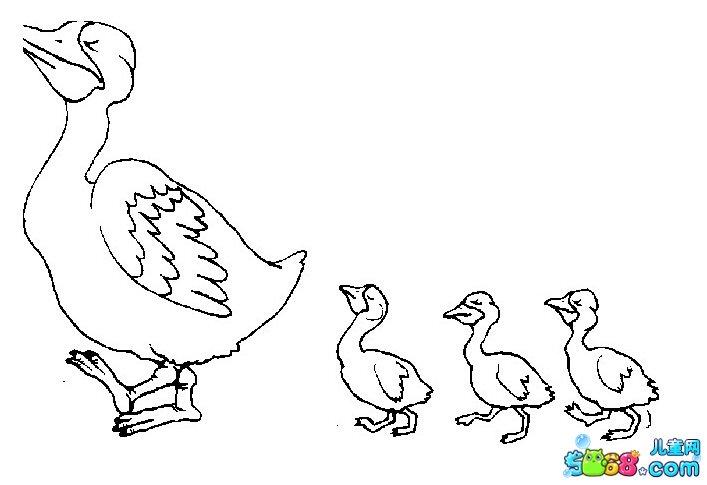 简笔画鸭子 风景