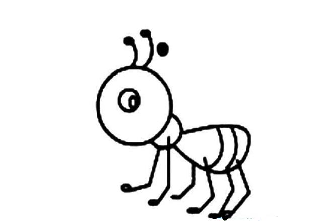 小蚂蚁大智慧_动物简笔画-e学堂图片