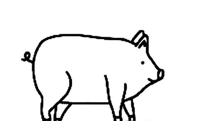 可爱猪简笔画抖音