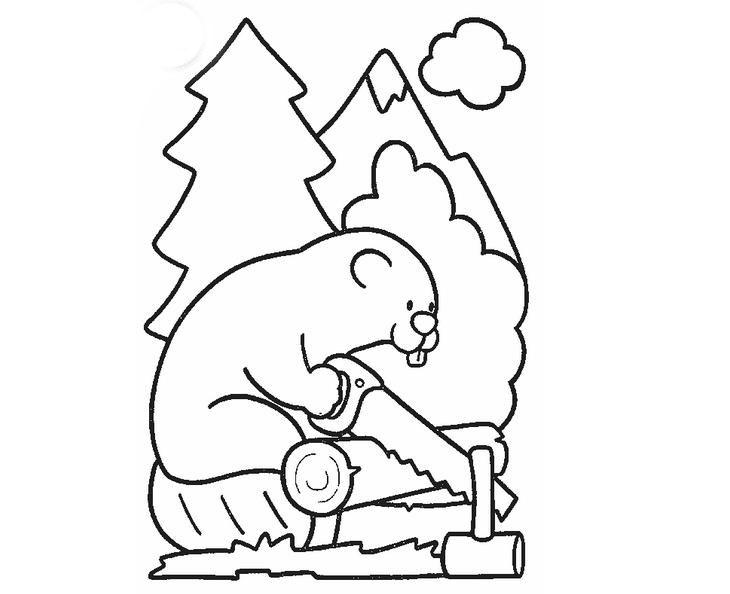 锯木头的小松鼠_动物简笔画-e学堂