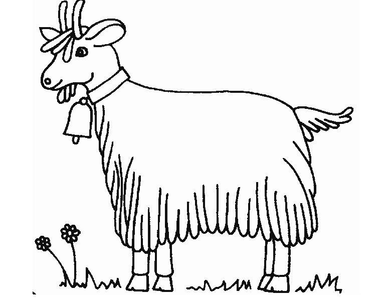 羊羊送吉祥_动物简笔画-e学堂