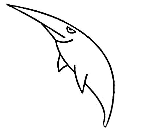 教你如何画鱼 尖嘴的鱼_简笔画教程-e学堂