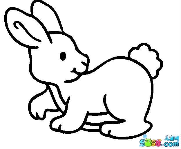 调皮的小兔子_动物简笔画-e学堂