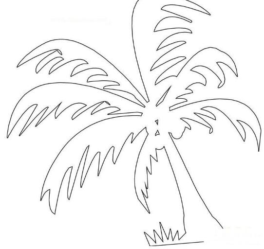 海边的椰子树