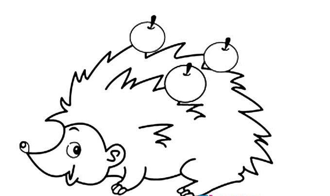 背果果的小刺猬_动物简笔画-e学堂