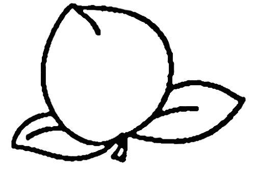 教你如何画桃子 水果简笔画