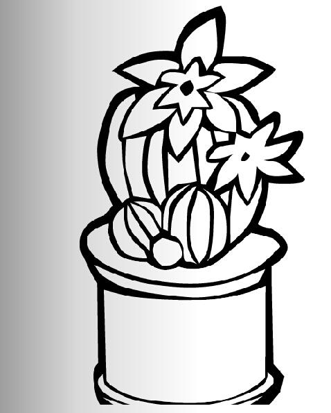 仙人掌开花了_植物简笔画-e学堂