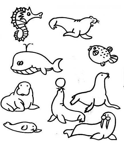 海底动物们在聚会_动物简笔画-e学堂