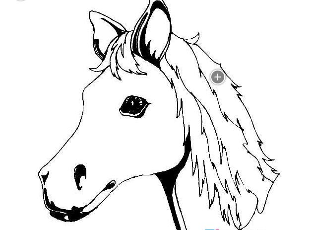 如何画马头部_动物简笔画-e学堂
