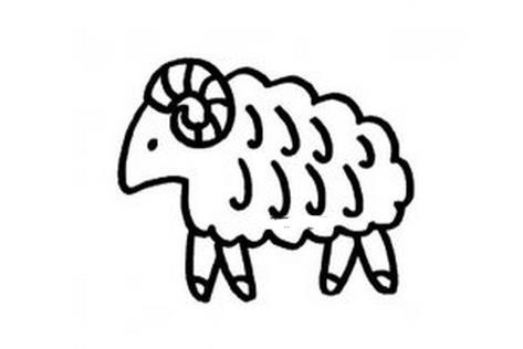 羊图片大全可爱简笔画