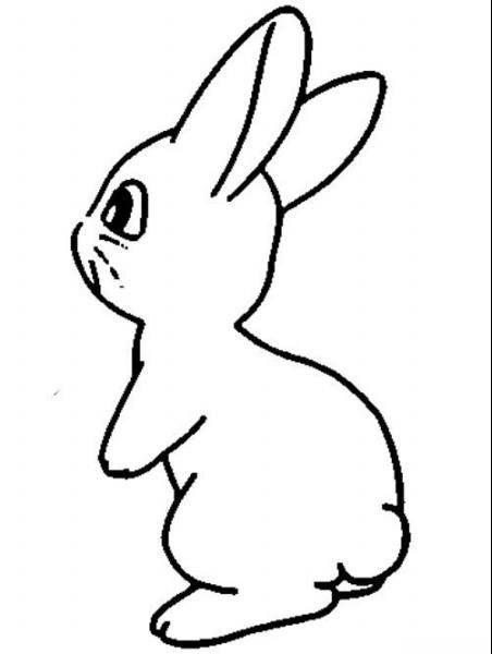 呆萌的小兔子_动物简笔画-e学堂