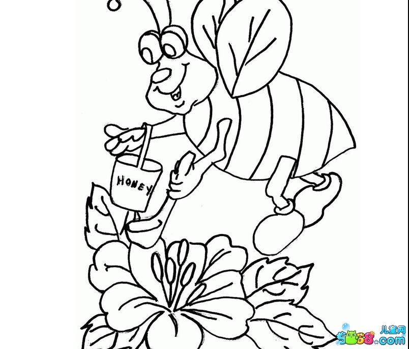 小蜜蜂采花蜜图片