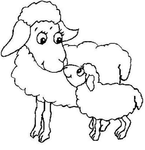 羊妈妈和小羊_动物简笔画-e学堂