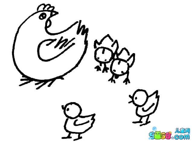 小鸡和母鸡_动物简笔画-e学堂