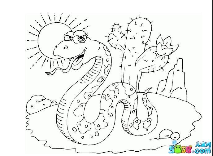 太阳下的大蟒蛇_动物简笔画-e学堂
