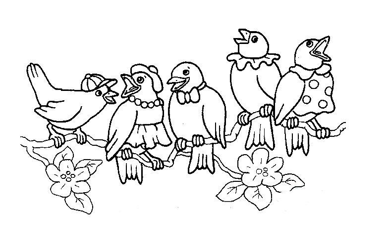 小鸟在歌唱_动物简笔画-e学堂