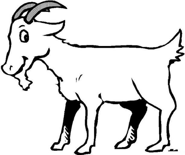 可爱山羊简笔画