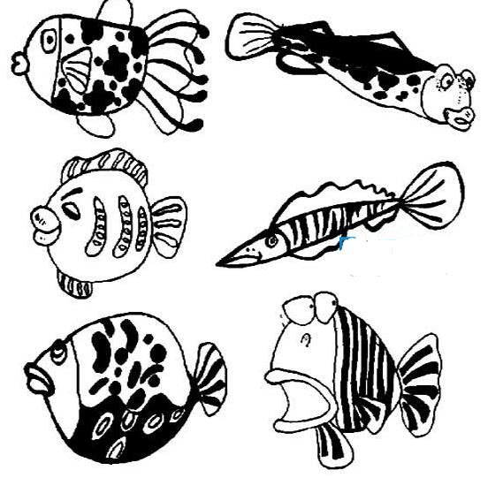 海里的鱼_动物简笔画-e学堂