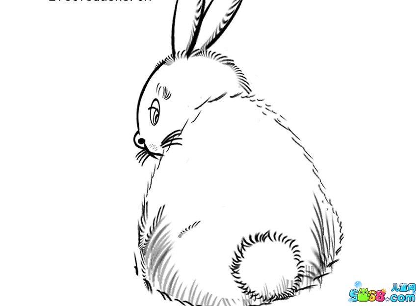 胖胖的小兔子_动物简笔画-e学堂